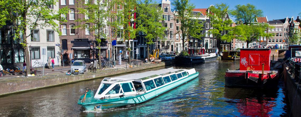 Taxrex Holandia